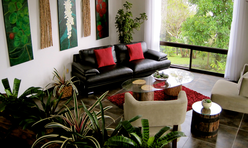Serenity Within Your Living and Working Space