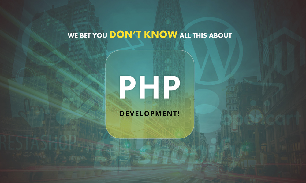 Nightmare of Other Web Development Languages: PHP