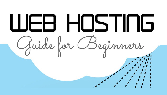 A Beginner's Guide to Web Hosting & Types of Hosting Available Today