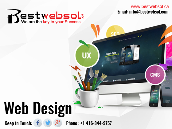 Know the World of Professional Web Designing