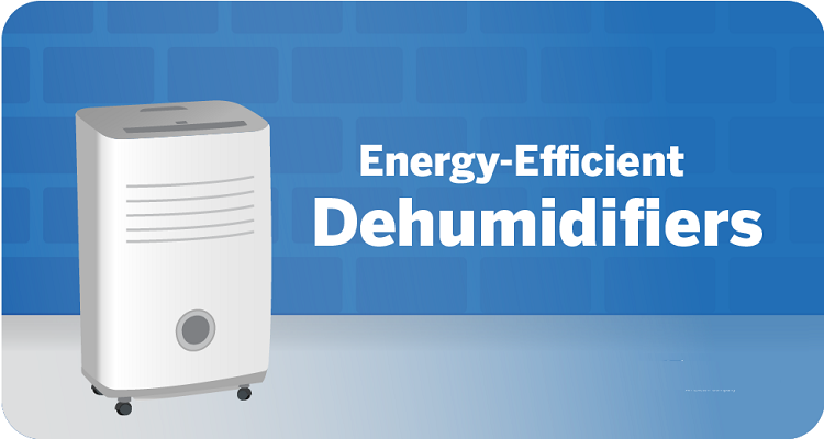 What Makes a House Dehumidifier Eco-Friendly?
