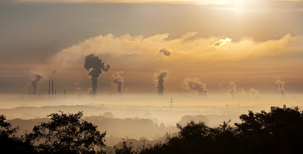 Reasons Why Environmental Hazards Audit Is Important