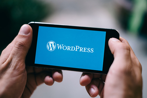 10 Essential WordPress Plugins Every Website Needs