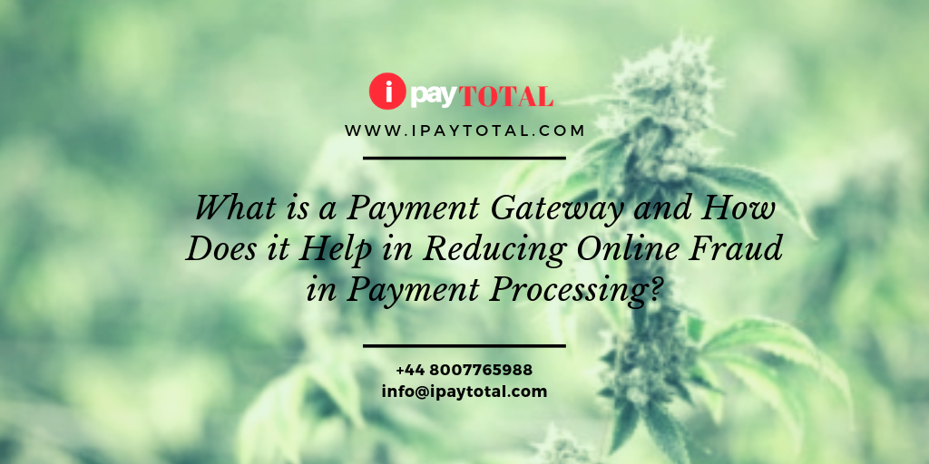 What is a Payment Gateway and How Does it Help in Reducing Online Fraud in Payment Processing?