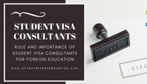 Best visa Consultant in patiala