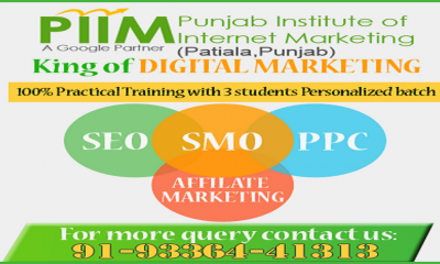 digital marketing course in Patiala