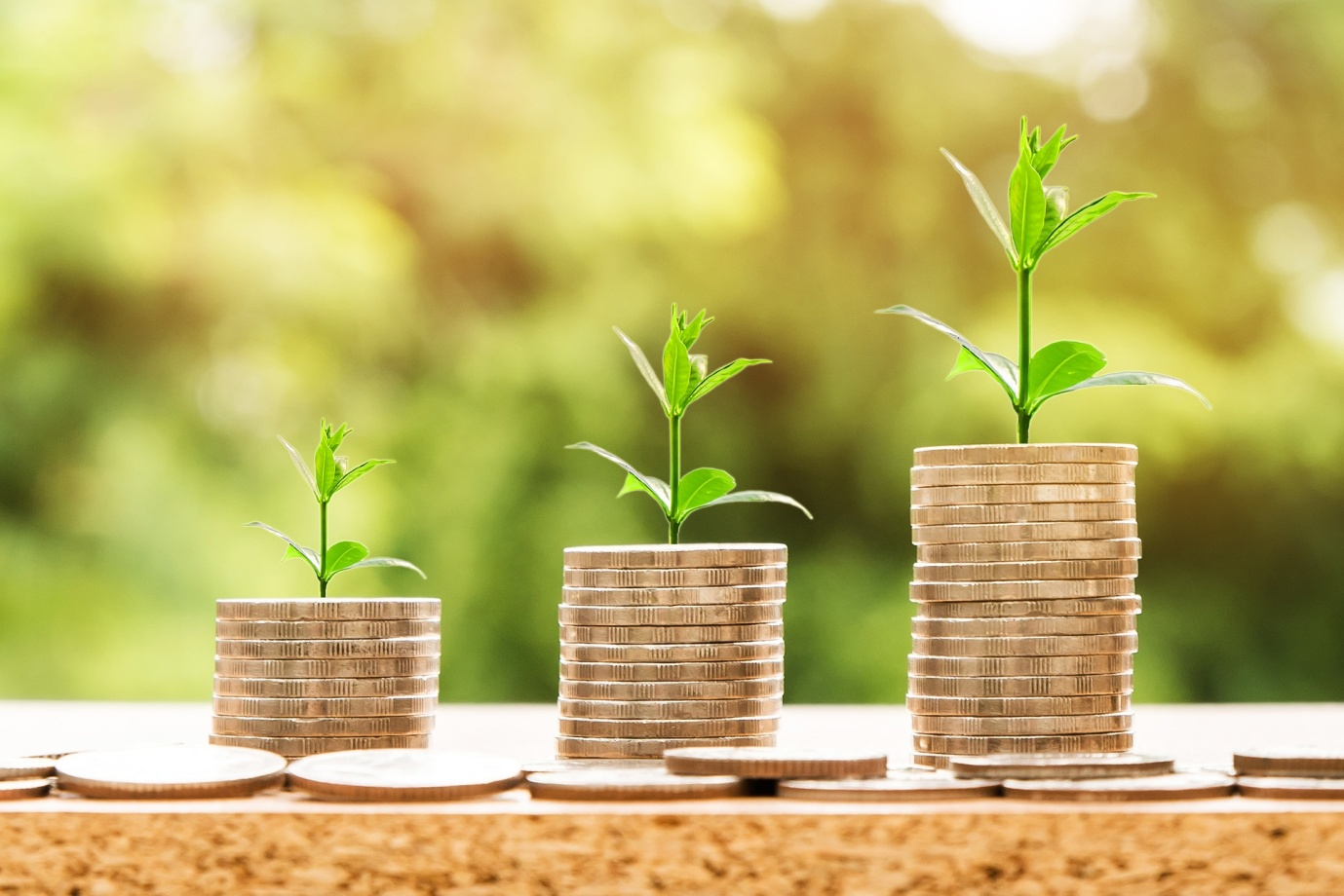 4 Tips On How To Determine The Best Mutual Fund House To Invest In
