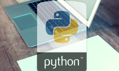 5 Reasons Why Python Is on Every Millennial's To-Do List