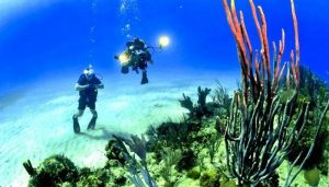 snorkelling top things not to do In perhentian islands malaysia