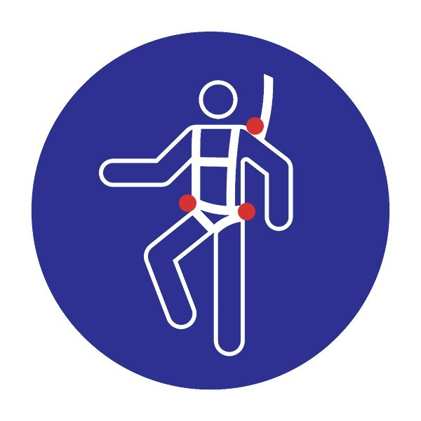 3-Point Harness