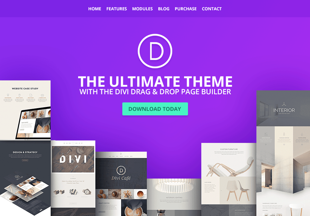 Which are the best WordPress themes for selling products online?