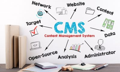 content management system in an organization
