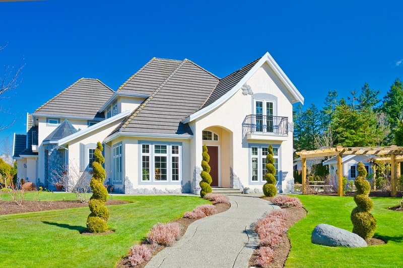 What Are the Popular Landscaping Supplies?