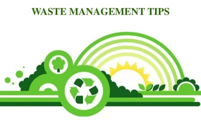 Four Waste Management Tips for Businesses