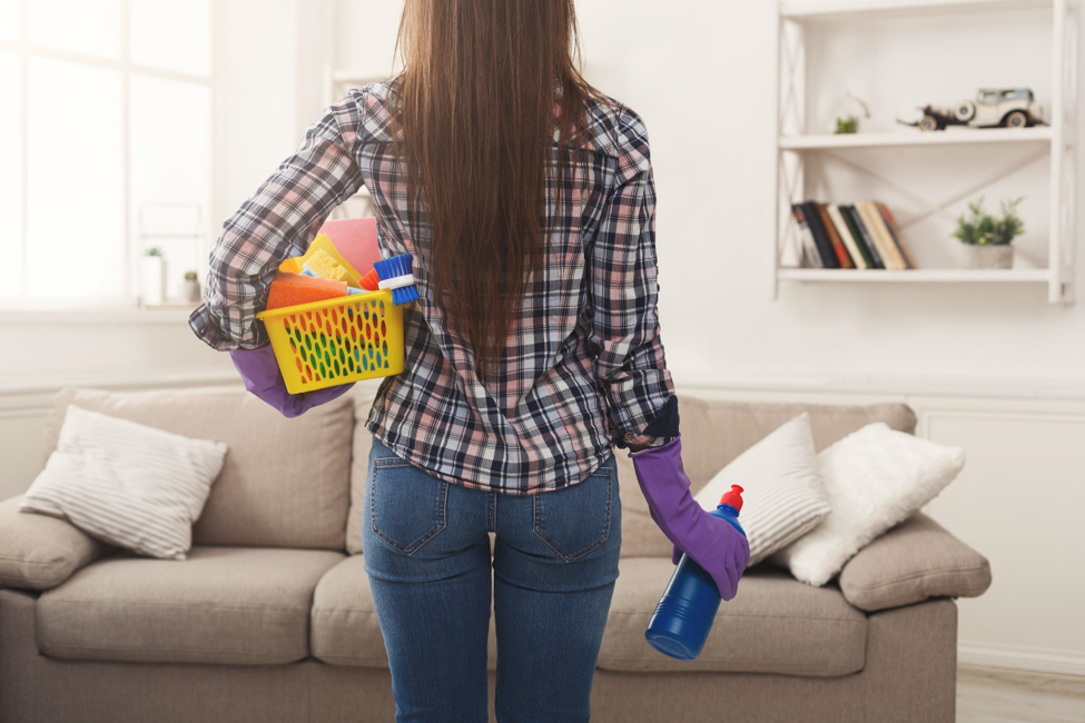 5 Reasons Why Your DIY Pest Control Methods Aren't Working