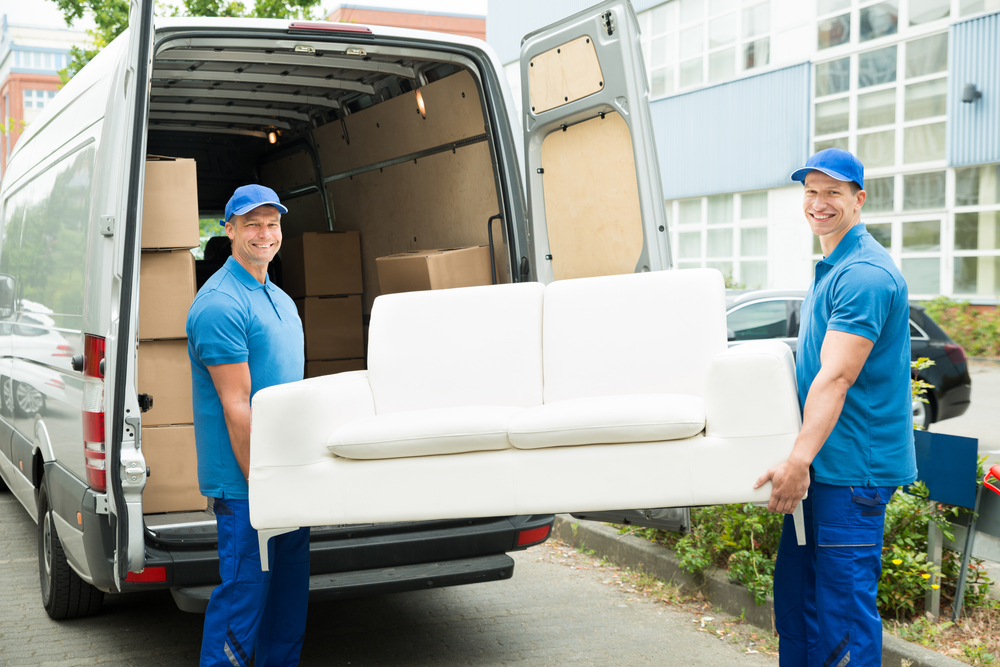 All You Need To Know About Removalists