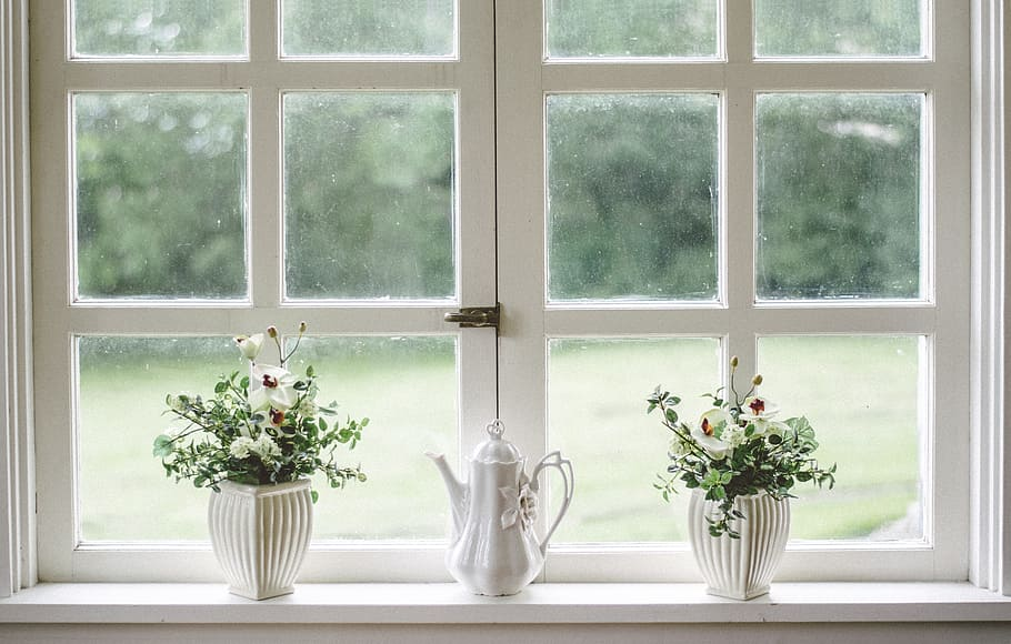 The Lives Within: 7 Benefits of Having Indoor Plants at Home