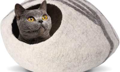 cat cave for large cats