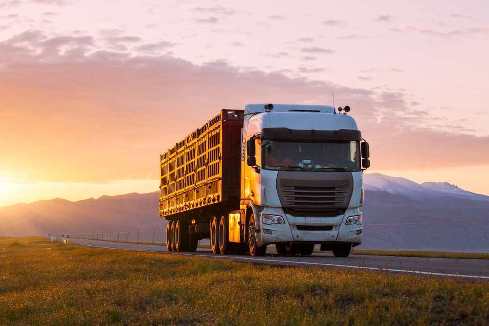 Why You Need Commercial Vehicle Insurance NYC