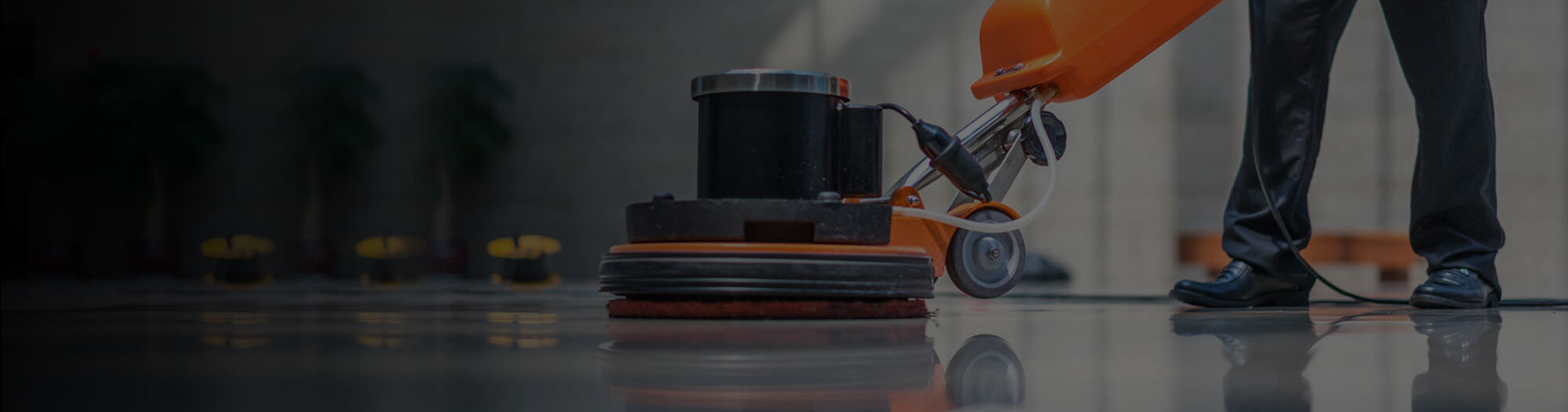 How Commercial Cleaning Services Stop Pest Infestation