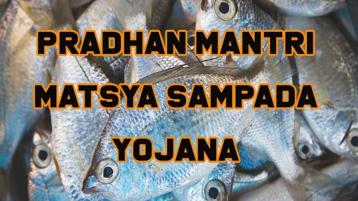 Pradhan Mantri Matsya Sampada Yojana for Fish Farmers