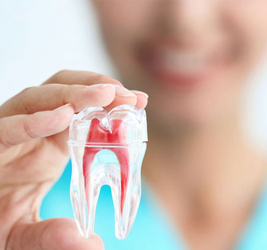 The Services Offered by Root Canal Treatment in Auckland
