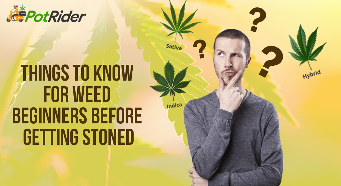 Things To Know For Weed Beginners Before Getting Stoned