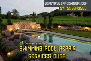 swimming pool repair services Dubai