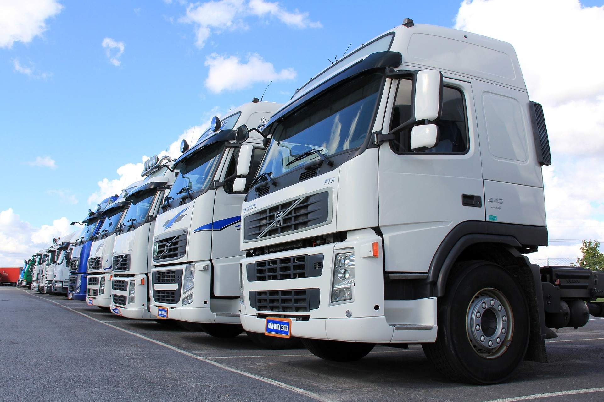 Everything You Must Know to Manage Your Logistics Company