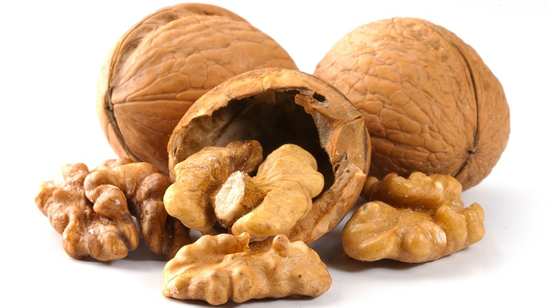 Walnuts Nutrition Facts: 6 Oilseeds Eat on a Daily Basis?