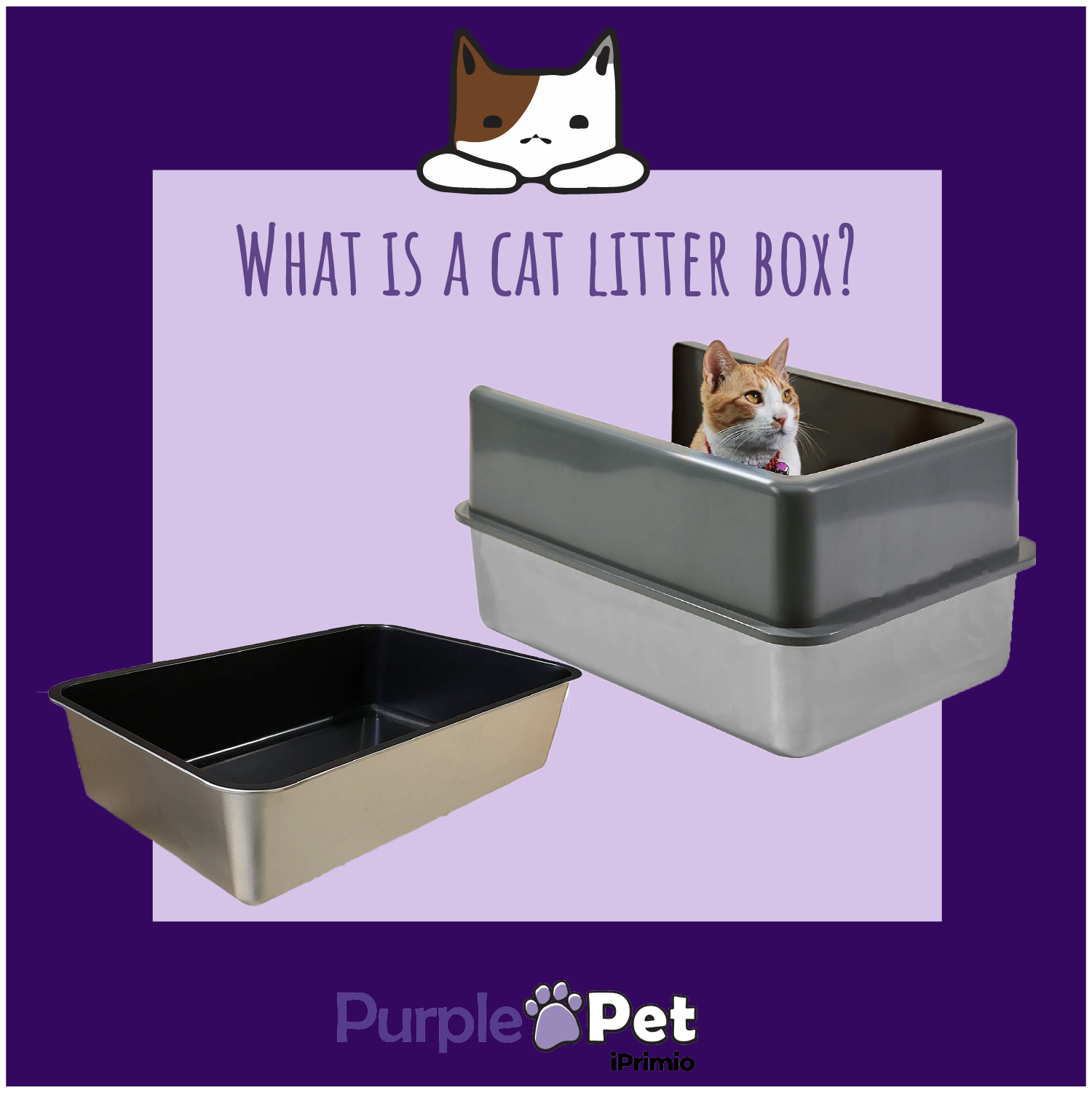 How to Use a Non Stick Litter Box