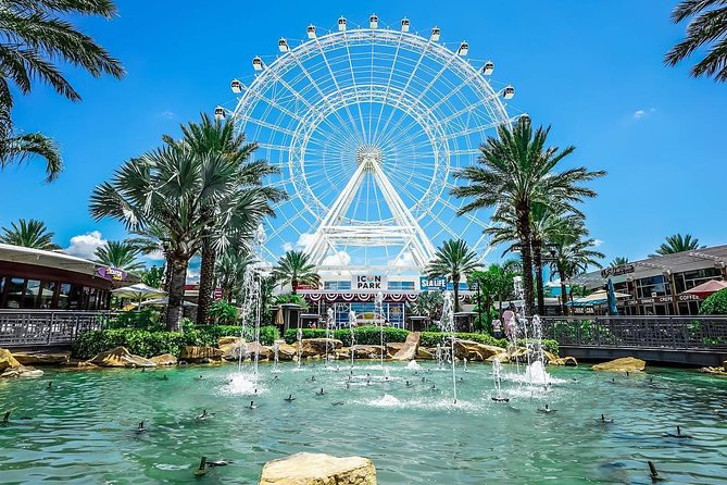 Top 12 Things to Do in Orlando
