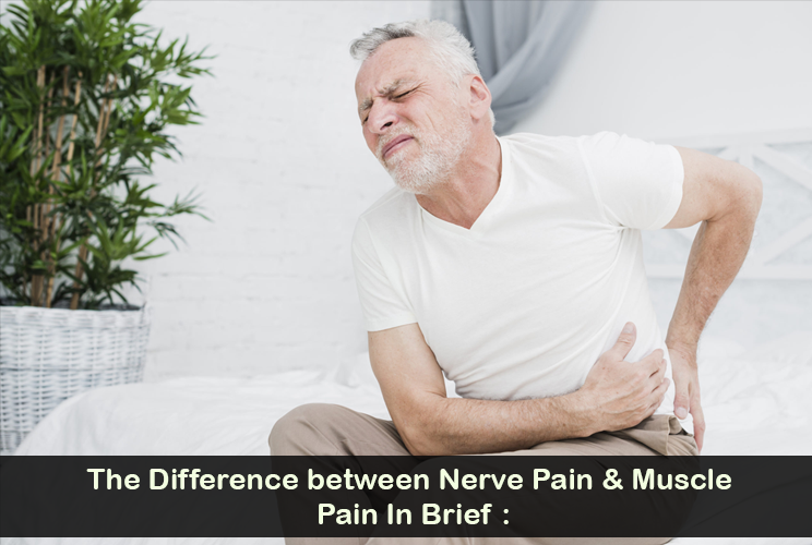 The Contrast between Muscular Pain & Neuropathic Pain