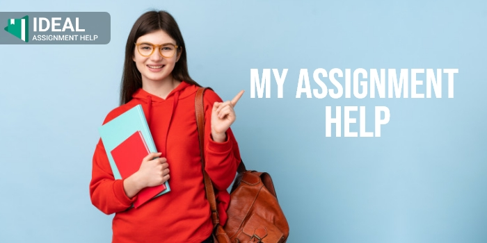 4 Effective Measures to Connect With an Assignment Help Company