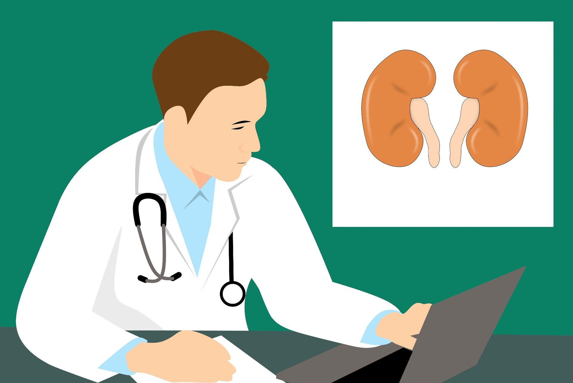 All You Need to Know About Kidney Dialysis