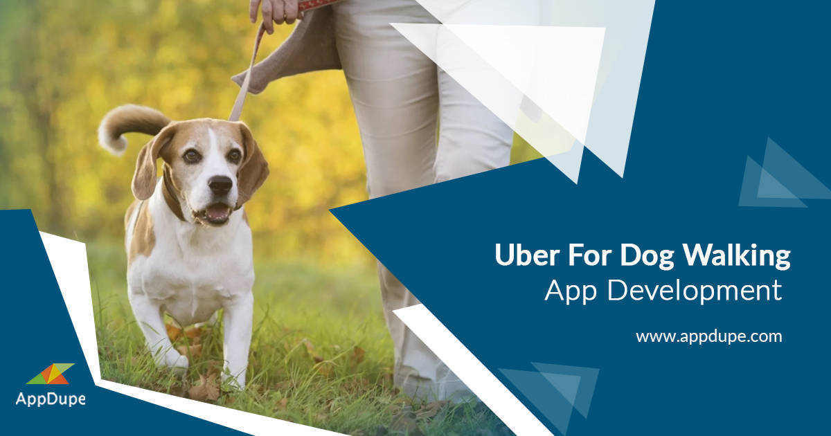 Spectacular features to include in Dog walking app development