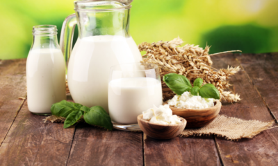 Buy Dairy Products Online