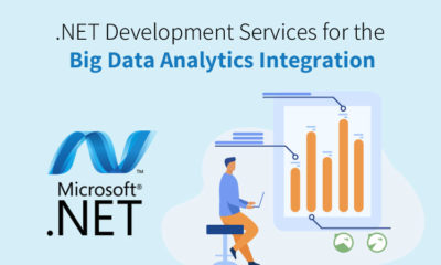 NET Development Services for the Big Data Analytics Integration