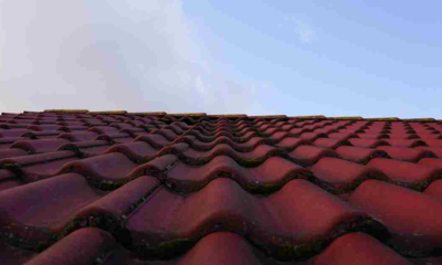 Top 10 Common Roofing Problems You Must Rectify Them
