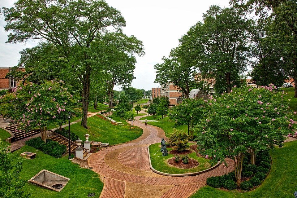 Top 3 Reasons to Attend the University Of Alabama