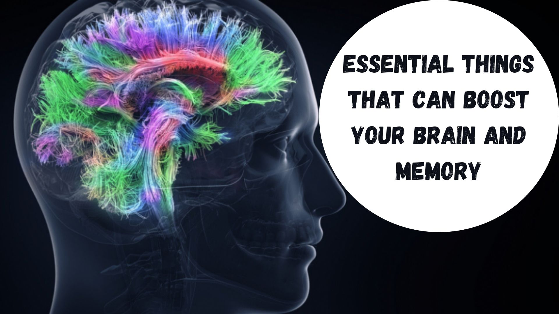 Essential Things That Can Boost Your Brain and Memory