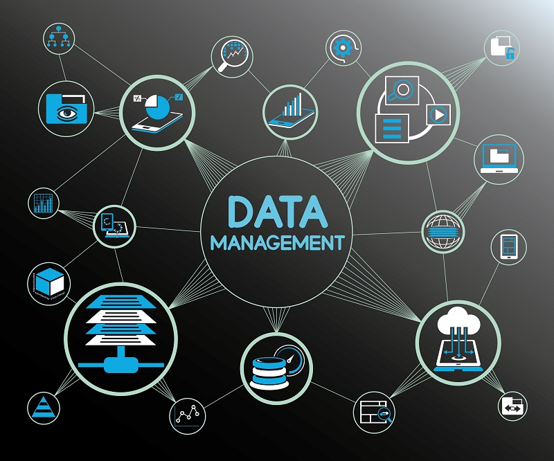 How Can Master Data Management Help Your Organization?