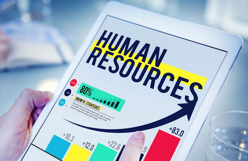 How Does HR & Payroll Software Aids in Functioning of a SMEs