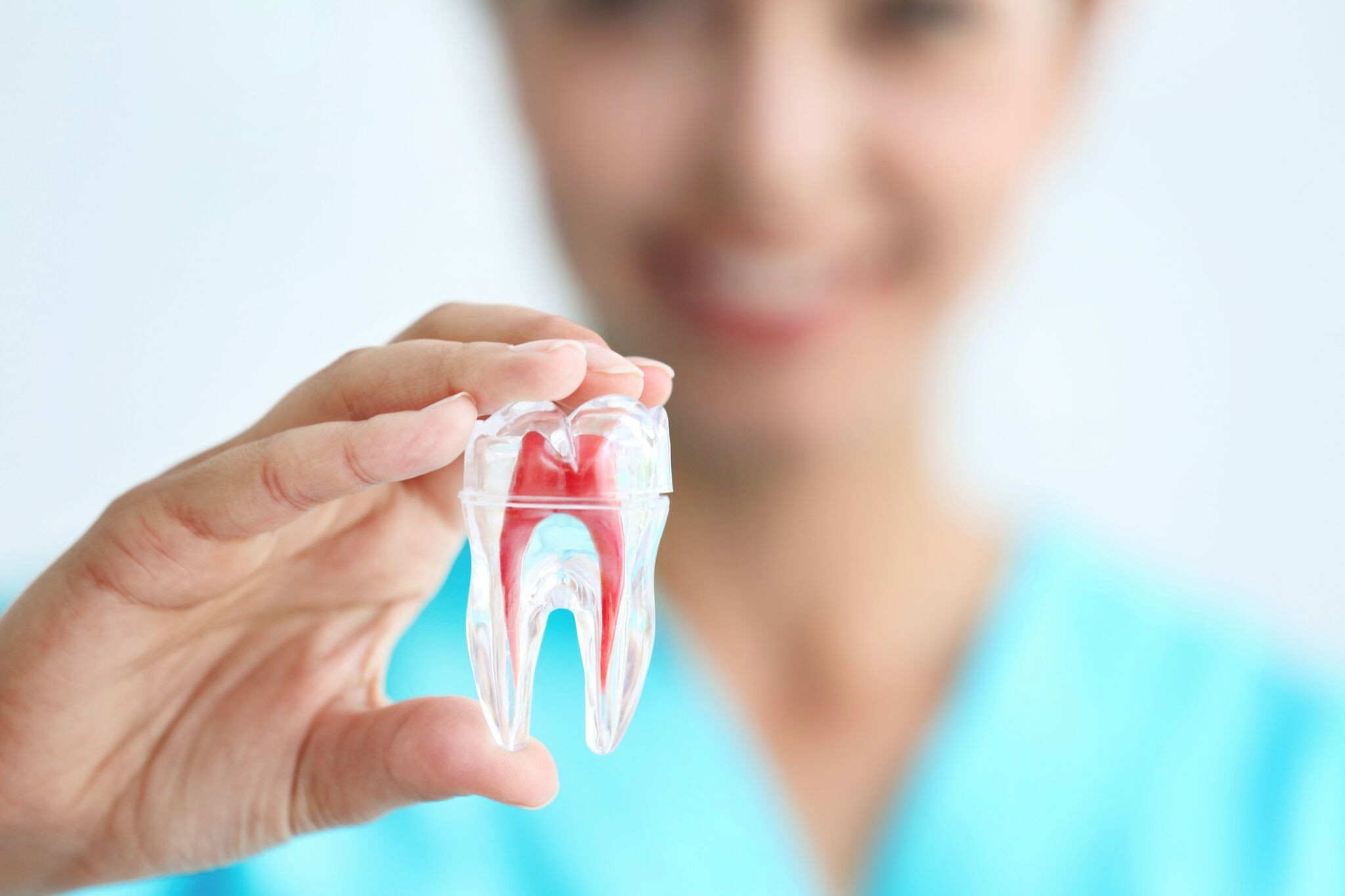 The Services and Functions Work Under Root Canal Work in Auckland CBD