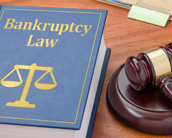 Bankruptcy-Fraud