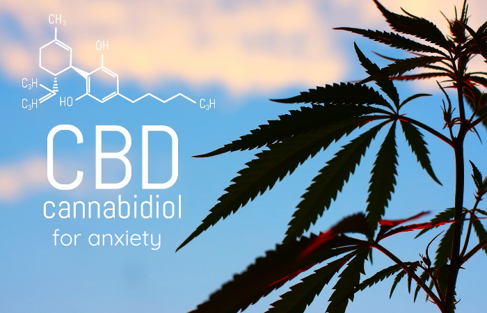 From Vaping to Indulging in Tasty Gummies – Best Ways to Use CBD for Anxiety