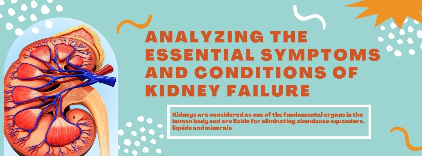 Analyzing the Essential Symptoms and Conditions of Kidney Failure