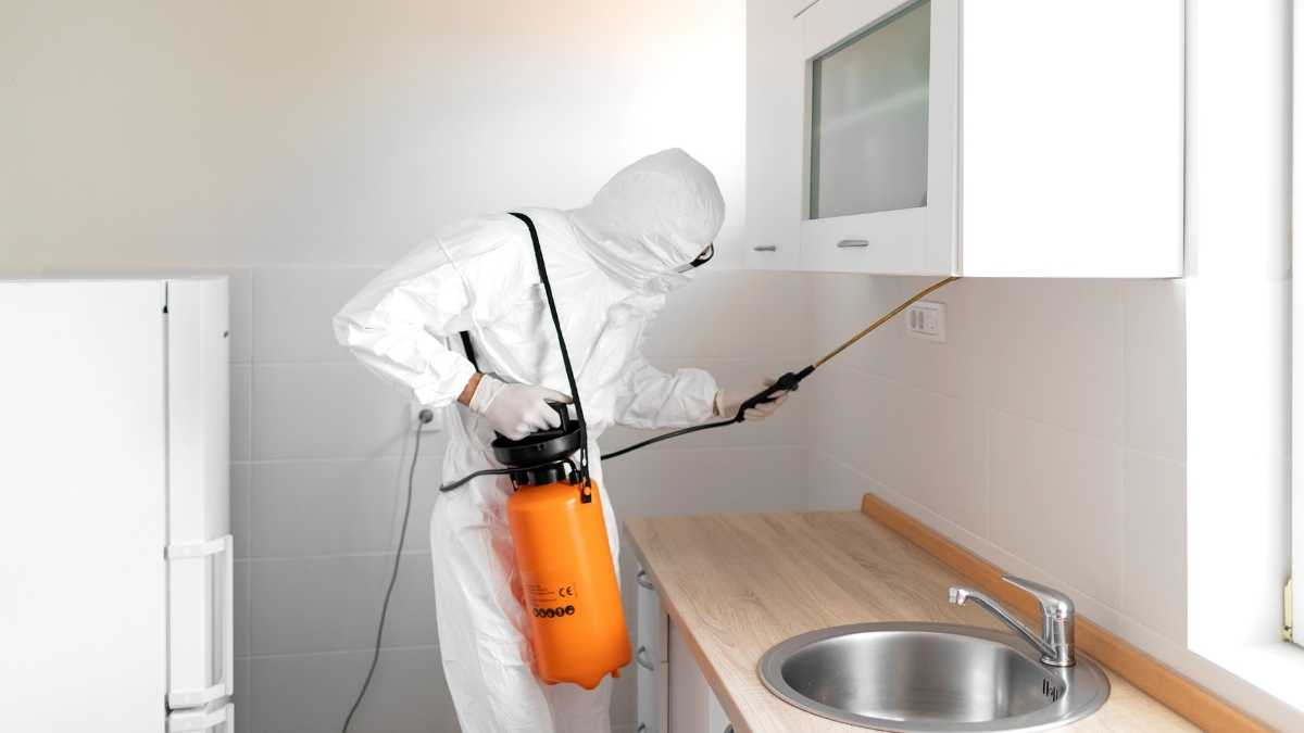 Expert Tips On Selecting The Best Pest Control Service Provider
