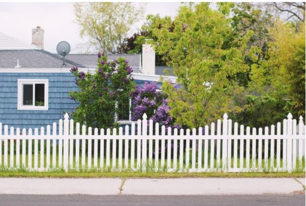 How to Make Your Backyard More Private
